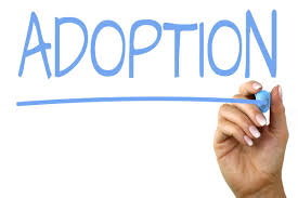 adoption and inheritance rights